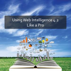 Using Web Intelligence 4.2 Like a Pro Product Image