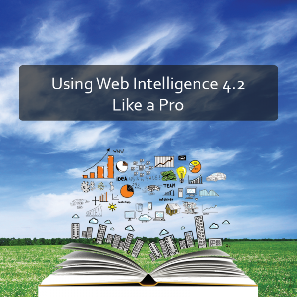 Using Web Intelligence 4.2 Like a Pro Product Image